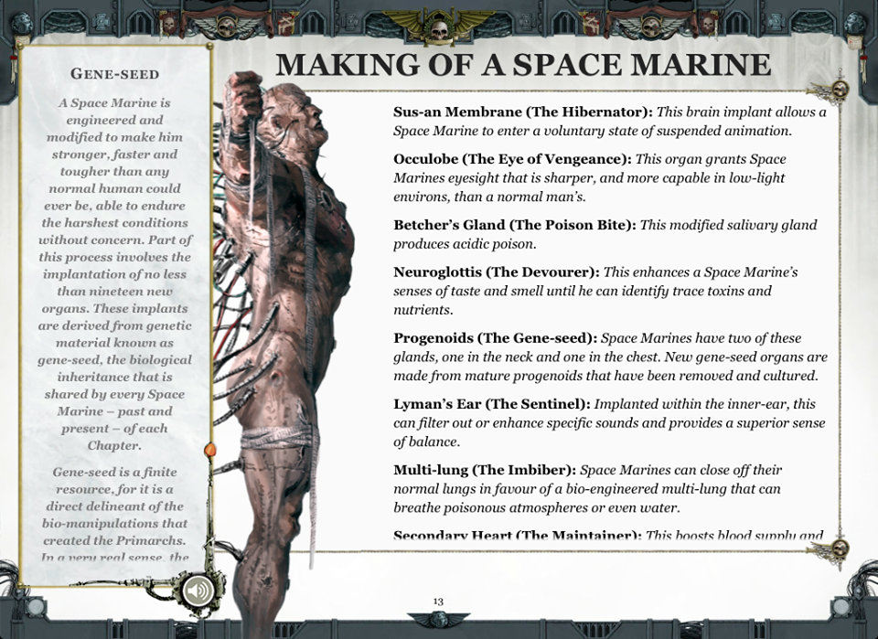 Space Marines - No Wing Wang
