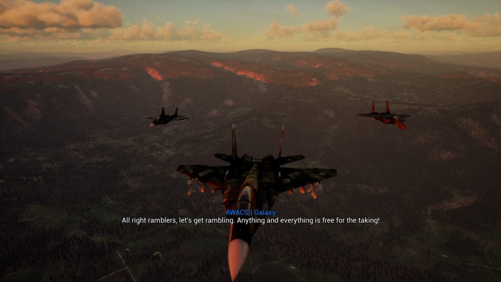 Project Wingman review